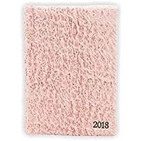Agenda 2018 in Carta Moonrock, Giornaliera, Tascabile, A6, 13Hx9L cm, Rosa, Hand Made in Italy by Legatoria Toscana, Artigiani Toscani