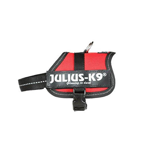 Julius-K9 Baby 2, 33-45 cm, Rojo