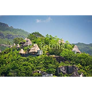 adrium View of Seychelles Coastline with Houses in The Forest(80863801)