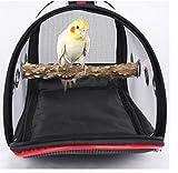 KNKM Pet Bird out Zaino Box di Trasporto per Cabina Portatile Grande Cintura Trasparente Supporto in Legno Asta di Alimentazione per palo Gabbia per Uccelli