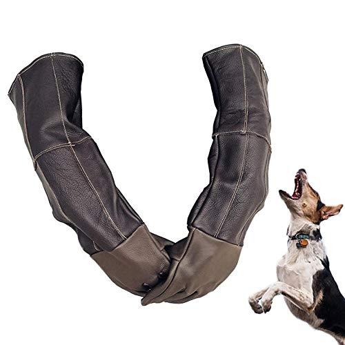 Pet Handling Handschuhe, Anti-Haustier Tier, Hund, Katze, Schlange, Biss, Rettungsstation, Schützende Lange Dicke Lederhandschuhe, Für Katzenhund Und Gartenarbeit. (Tier Schützende)