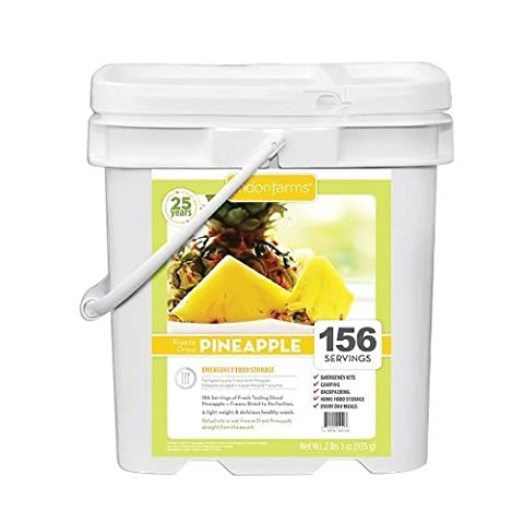 Lindon Farms Freeze Dried Pineapples (156 Servings) by Ready Project