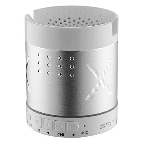 ToDIDAF A05 Tragbarer Drahtloser Bluetooth-Lautsprecher, Mini-Musik-Player, FM-Radio + USB-Funktion, Schnelles Laden und Langer Standby-Modus - Gold/Blau/Silber (Silber)