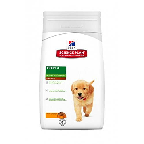 Hills-Science-Plan-Puppy-Large-Breed-16-Kg