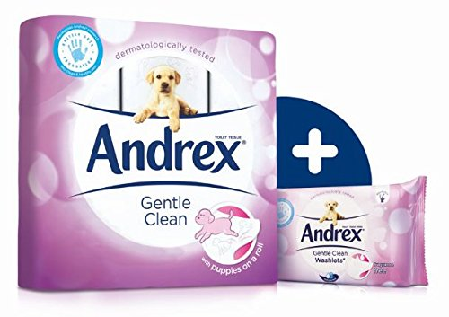 Andrex Washlets Flushable Toilet Tissue Wipes, Gentle Clean – Pack of 12 (Total 504 Wipes)