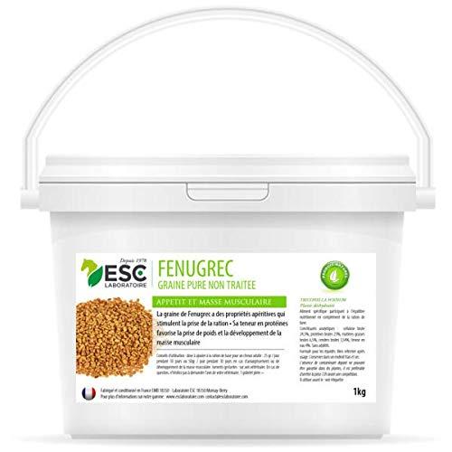 ESC Laboratorio - Fieno greco per cavalli - 1 kg - Integratore alimentare per cavalli.