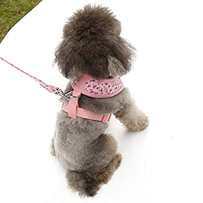Floral Pattern Tiny Small Dog Harness Leash Lead Walking Chest Strap (M, Pink) 3