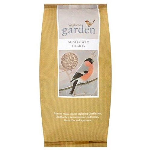 garden-sunflower-hearts-for-birds-waitrose-2kg