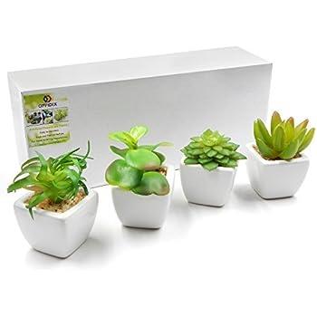 Decorazioni per interni Casa e cucina OUNONA 3pcs piante ...