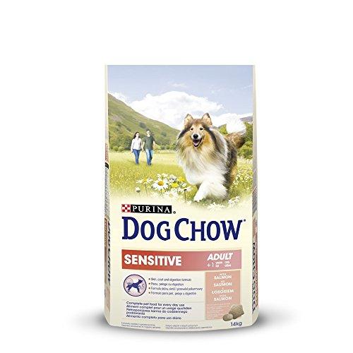dog-chow-sensitive-au-saumon-14-kg