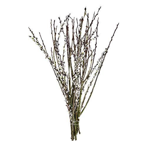 20 echte Weidenkätzchen-Zweige ca. 80cm: echte Deko-Zweige im Bund | natürliche Oster-Deko | Äste für Bodenvase | Frühlingsdeko