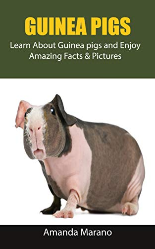 Guinea pigs: Learn About Guinea pigs and Enjoy Amazing Facts & Pictures (English Edition)