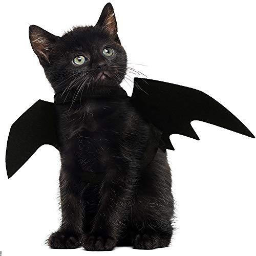 JDYW Disfraz de Gato Mascota Alas de murciélago...