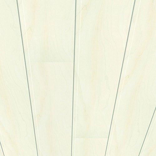 Swing-panel-system (Swing Line Wandpaneel und Deckenpaneel Birke Weiß 2200 x 168 x 10 mm)