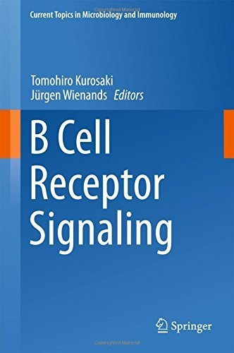 B Cell Receptor Signaling (Current Topics in Microbiology and Immunology) (2015-12-26) par unknown