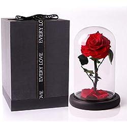 Rosa bella y bestia de cristal y madera