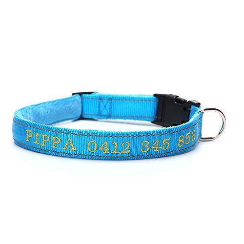 ALiYangYang Benutzerdefinierte Hundehalsband personalisierte weich gepolsterte reflektierende langlebige verstellbare Nylon Hundehalsband für männliche weibliche Hunde,Blue,M (Hundehalsbänder Weibliche)