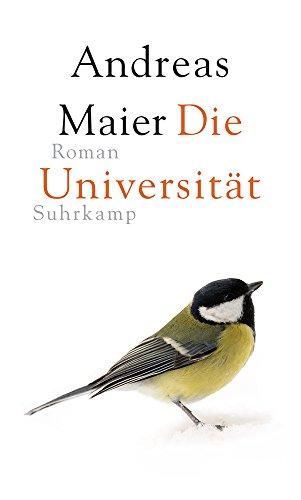 Die Universität: Roman