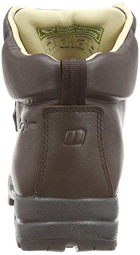 Berghaus Supalite Ii Gtx Boot, Chaussures de Randonnée Hautes Femme Marron (Chocolate Cp1)