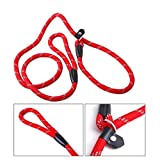 Hemore Hundeleine, Nylon, verstellbar, mit Schlaufe, strapazierfähig, für Kleine und mittelgroße Hunde, 1,2 m, zufällige Farbe