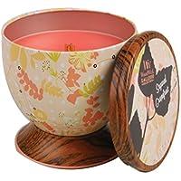 Pajoma 44877 Woodwick - Candela profumata, collezione Gallery, aroma: Pompelmo zuccherato, 240 g