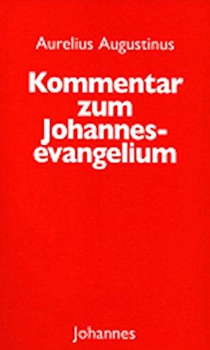 Kommentar zum Johannesevangelium (Sammlung Christliche Meister)