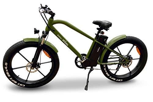 Easy-Watts Fatbike Vélo à Assistance Électrique VAE VTT Batterie Amovible Samsung 36V 10,4Ah Transmission Shimano Freins Tektro Autonomie 50 KM Vitesse Max 25 km/h Norme CE Garantie 2 Ans e-Fat (Vert)