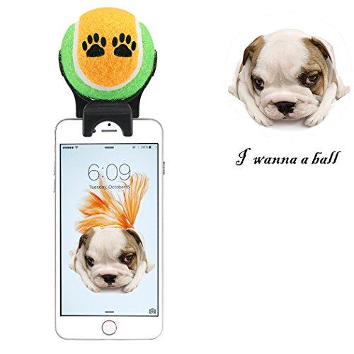 Aberg Best Selfie-Stick für Smartphones, zur Befestigung, für das Haustier, Katzenminze-Spielzeug, Ball für Haustiere