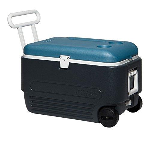 Igloo Maxcold 60 Roller Glacière Bleu 57 L