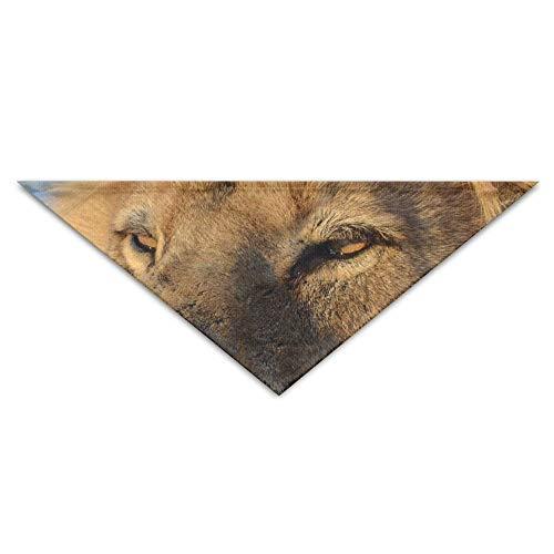 Dog Lion Head Kostüm - Gxdchfj Animal Lion Gaze Pet Dog Cat Puppy Bandana Triangle Head Scarfs Accessories