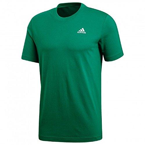 adidas Herren Essentials Base T-Shirt bgreen/White