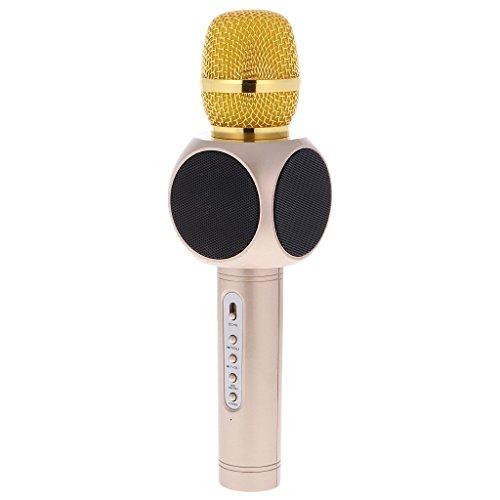 Microfono Wireless Portatile Altoparlante per Microfono Senza Fili, Amicool Altoparlante per lettore Karaoke per portatili Bluetooth per Apple iPhone Smartphone o PC per Apple iPhone, Casa KTV Outdoor oro