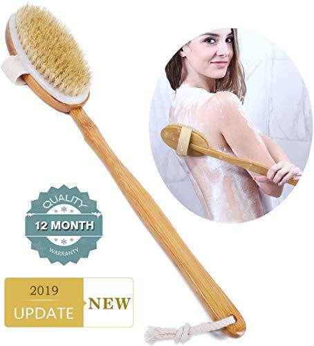 WIKEA Körperbürste Naturborsten - Back Scrubber & Body Brush zum Bürsten trockener Haut mit 100% natürlichen Wildschweinborsten und langem Griff (2019 Aktualisiert) -