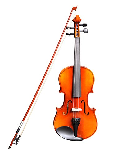 Sergio Tordini 4/4 Full Size Acoustic Violin With Bow, Rosin And Soft Case - STC 441
