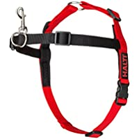 HALTI HARNESS BLACK/RED Medium