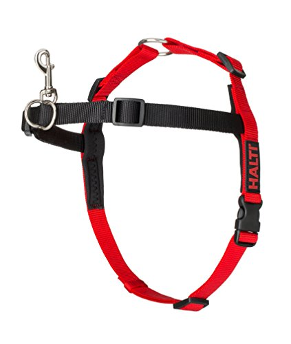 The Company of Animals COALH02 Halti Harness Arnés, M, Rojo y Negro