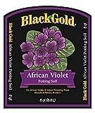 Black Gold 1410502 8 Qt P 8 Quart African Violet Potting Soil