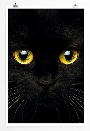 Eau Zone Bilder - Tierbilder – Schwarze Katze mit Strahlend Gelben Augen- Leinwand Kunstdrucke Wandbilder aus ()