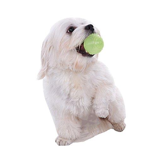 Glow Ball Hund Spielzeug (Haustier Hund Chew Spielzeug Ball Glow in der Dunklen Ball für Hund Katze TPR Ball Spielzeug)