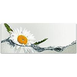 DekoGlas Cuadro de Cristal Decorativo con diseño de Margaritas de Agua (acrílico, Cristal, para Cocina, Pasillo, salón, Pared, 1 Pieza, 125 x 50 cm)