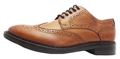 Base London Woburn, Chaussures de ville à lacets pour homme Marron marron