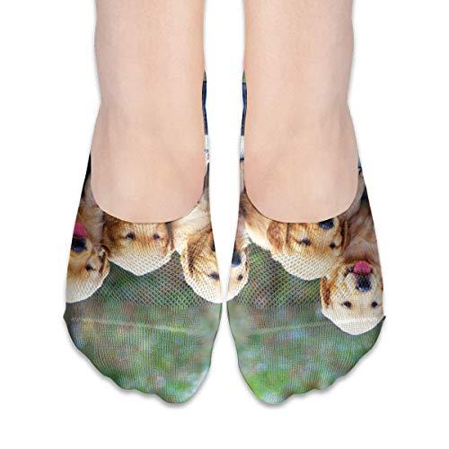 dfegyfr Funny Dog Golden Retriever Women's Polyester Cotton Socks Ladies Boat Socks Deodorant Boat Socks Thin Section Casual Socks Low Breast Socks
