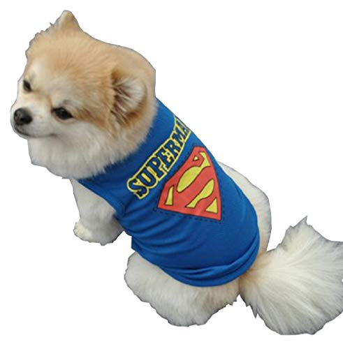 Inception Pro Infinite Kostüm - Superman - Superheld - Stahlhund - Hund (XS)