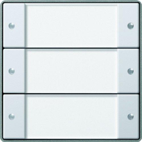 GIRA 2133203 Aluminio, Transparente interruptor de luz - interruptores de luz (Aluminio,...