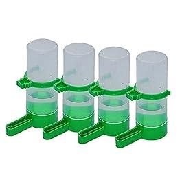 Patgoal – Mangiatoie per uccellini, in plastica, per semi, con distributore d'acqua Trasparente, set da 4