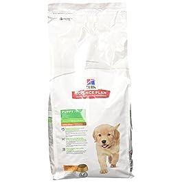 Hill's Puppy Healthy DevelopmentTM – Cibo per cuccioli di taglia grande, al pollo