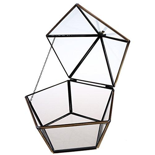 Blesiya Geometrische dekorative Terrarium Glas Sukkulente Pflanzgefäß Pflanzbehälter Haus...