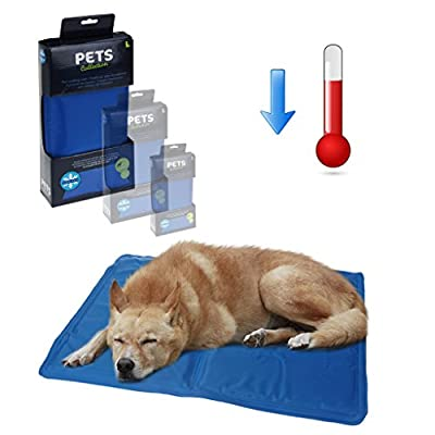 Pet Dog Cooling Mat Pad Cat Puppy Cool Gel Self Bed Non Toxic Summer Heat Relief (Large)