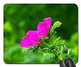 Mauspads - Hund Rose Rose Bloom Blossom Bloom Rosa