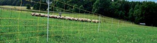 Schafnetz